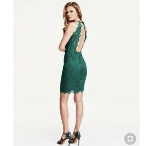 Sexy H&M Emerald Green Lace Dress Size 2 NWOT